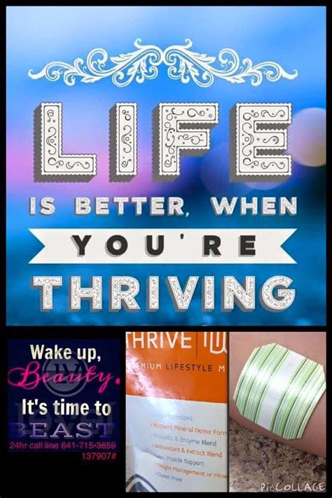 level 3 weight management 17 best images about thrive le vel on the