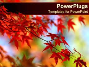 vibrant fall leaves powerpoint template background of