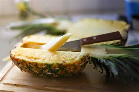 dogs eat pineapple can you eat pineapple fruit blender