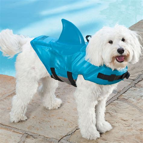 jacket for dogs shark fin images