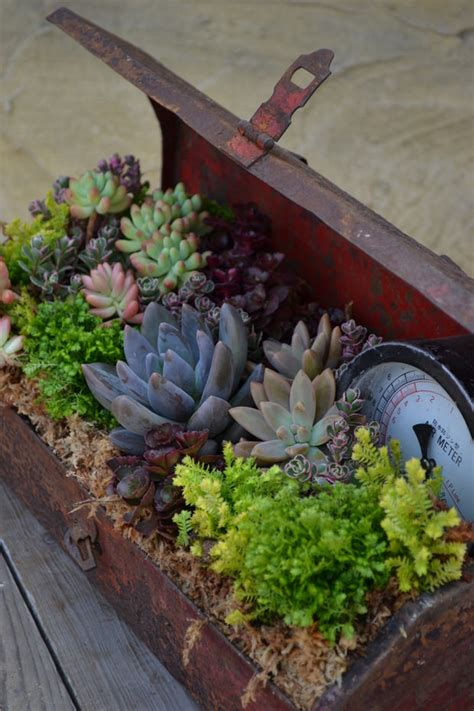 easy container gardens easy container gardening 7 containers you never thought