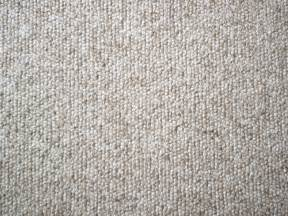 Best Rug Cleaning Carpet Carpet Vidalondon