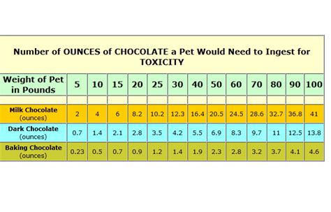 symptoms of chocolate poisoning in dogs why does chocolate kill dogs when they eat it dogs cats pets