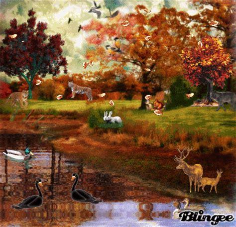imagenes de otoño bellas hermoso oto 209 o fotograf 237 a 100548751 blingee com