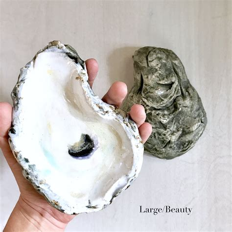 ceramic oyster shells home malone