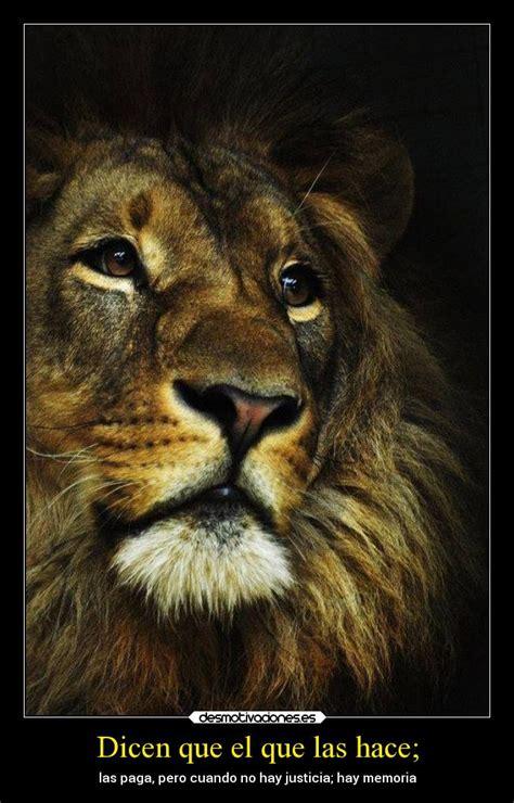 frases en imagenes de leones im 225 genes y carteles de leon pag 10 desmotivaciones