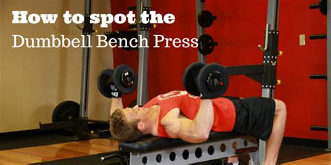 players bench tamarac spotting dumbbell bench press how to spot the dumbbell