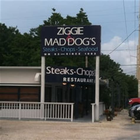 ziggy and mad dogs ziggie mad s 64 photos restaurant de fruits de mer islamorada fl