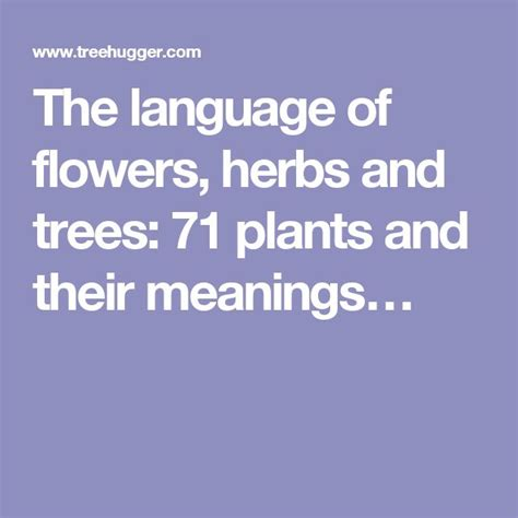 trees and their meanings 25 b 228 sta language of flowers id 233 erna p 229 pinterest