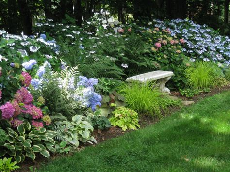 summer in nancy s garden in maryland fine gardening