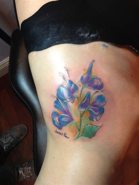 top sweet pea flower images for pinterest tattoos