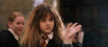 ode to hermione granger and the brilliance of bossypants