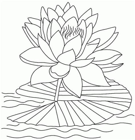 coloring pages of lotus flowers lotus flower coloring pages coloring home