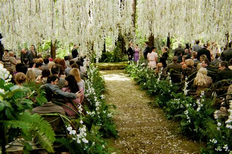 beautiful garden movie the broke bridezilla the twilight wedding