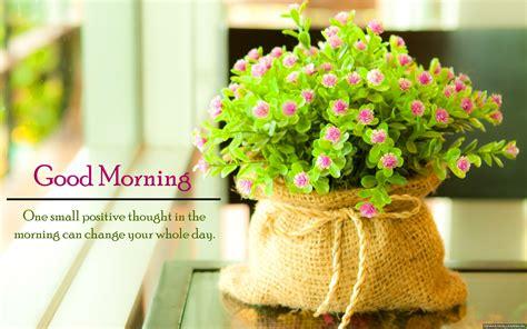wallpaper flower morning best good morning quote flowers hd wallpaper new hd