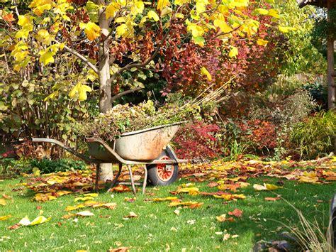 cura giardino cura giardino pratiche per prepararsi all autunno