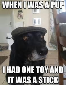dog meme free large images