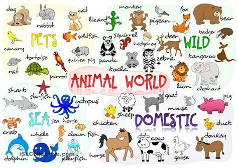 printable animal poster animals class 1 olympiad made easy