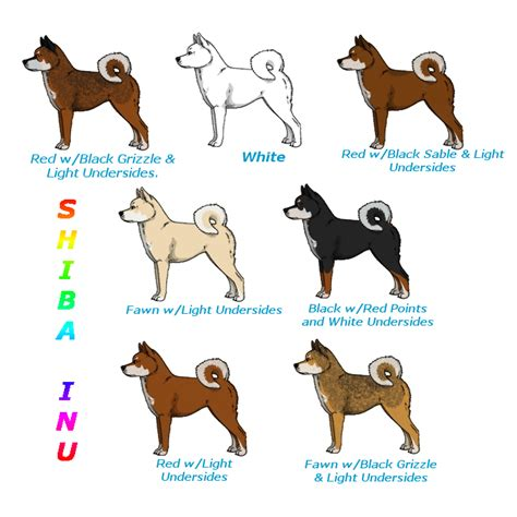 shiba inu colors shiba inu color chart for fp by simplyalise on deviantart