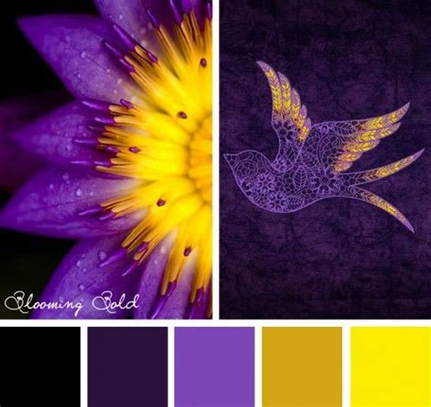 complementary color of purple best 25 yellow complementary color ideas on