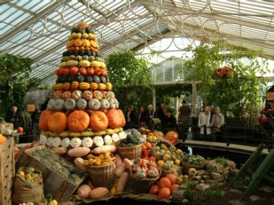 incredible! kew gardens to unveil towering pyramid of