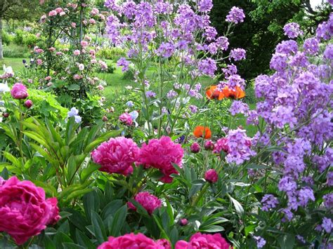 In Gardens And Flowers The Beautiful Flowers Of Giverny Meg Travels