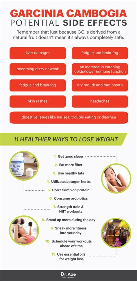 Methylation Side Effects Detoxing Urine by Forskolin For Weight Loss Uses Side Effects Lobster House