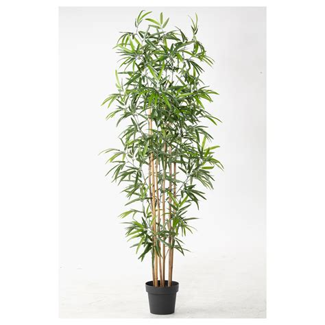 artificial plants for living room pclimage babayballx2850 artificial plants for living room
