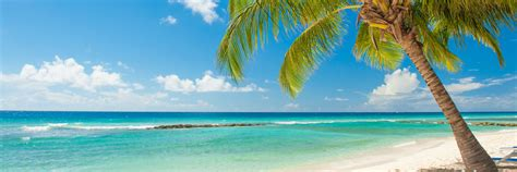 caribbean island     caribbean