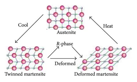 and temperature dependent transitions from austenite