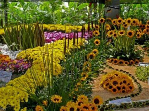imagenes de jardines botánicos jard 237 n bot 225 nico medell 237 n colombia plantas