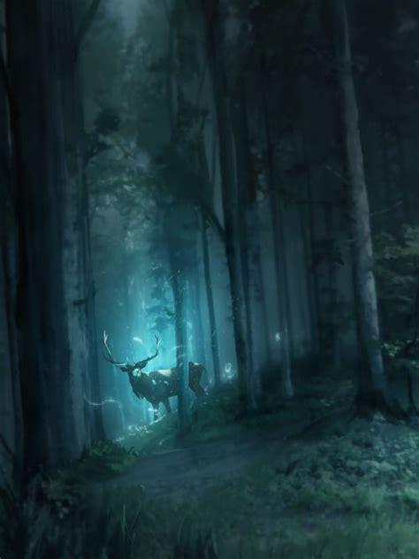 Light An Otherworld Book 25 best ideas about forest on