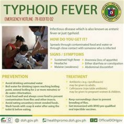 what is typhoid disease women health exercise during pregnancy pregnancy exercises and