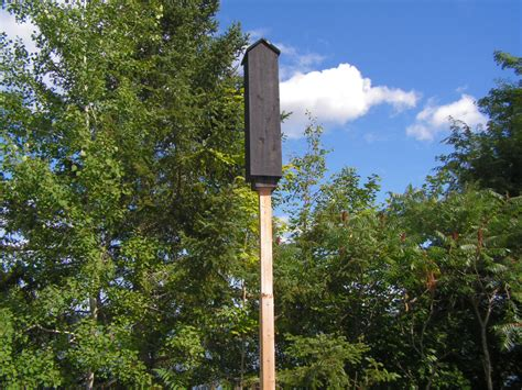 plans to build a bat house find house plans