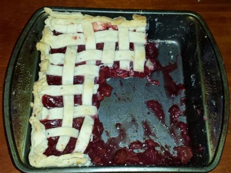 Square Pie In The Eco Circle by Square Works Hallee The Homemaker