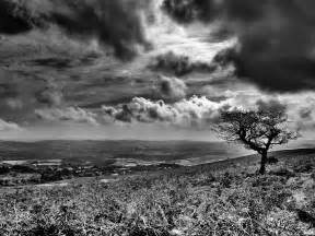 Landscape Black And White Wallpaper Photography Black And White 2017 Grasscloth