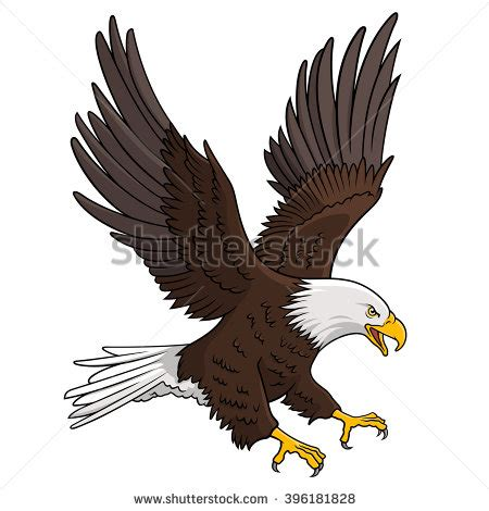 eagle stock photos royalty free images amp vectors