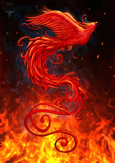 phoenix tattoo with background phoenix design2 background by amorphisss deviantart com on