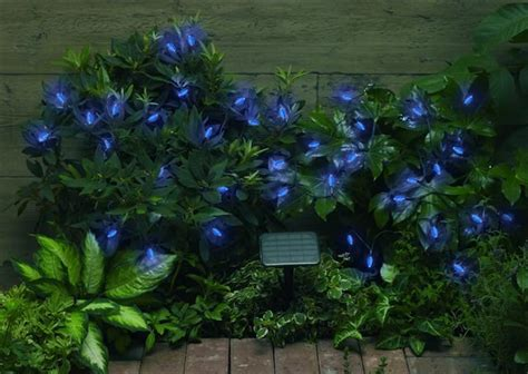 decorative string of 50 blue solar powered leds for the