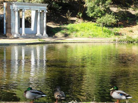 family garden sf golden gate park wikiwand