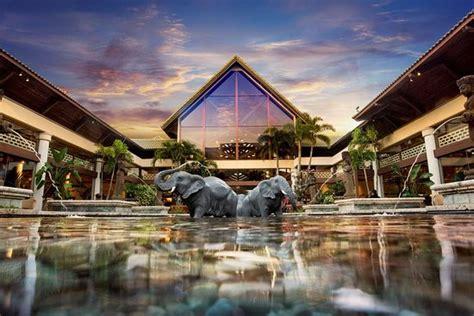 loews royal pacific resort updated  prices reviews