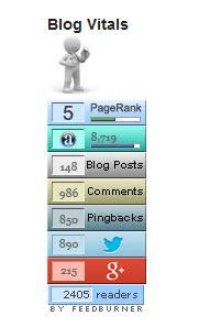 wordpress blog vitals stats plugin show your blog's