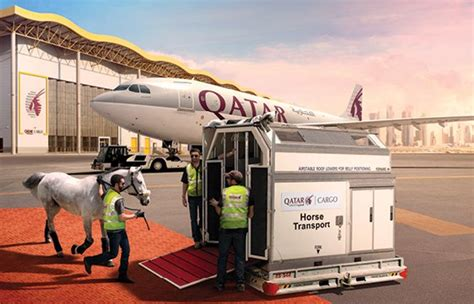 Animal Air Freight by Qatar Airways Global Growth And Ups Animal Service