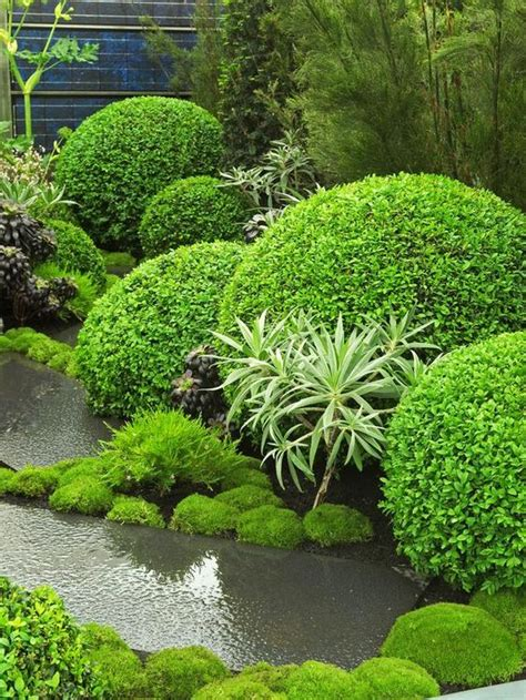 Forms In Landscape Design Topiaries Shape And Topiary Garden On