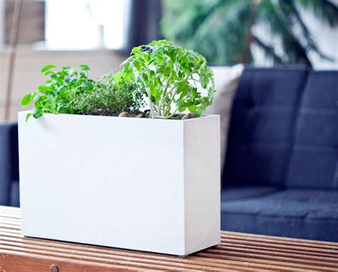 Hydroponic Planters by New Stylish And Simple Hydroponic Windowsill Planter