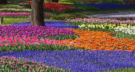 giardini zen giappone giappone giardini zen partenze garantite ruby travel