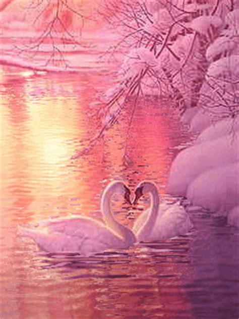 imagenes amor sin letras imagenes bonitas sin letras