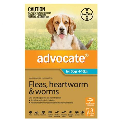 flea killer for dogs advocate flea worm for dogs bowhouse simply the best