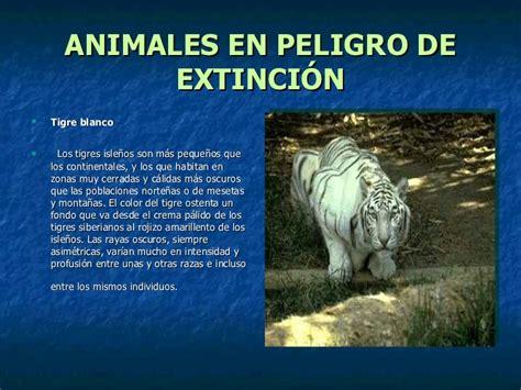 informacion de anses sobre los 800 pesos de ayuda escolar animales en peligro de extinci 243 n