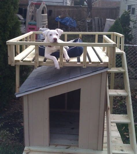 dog house roof pitch dog house with rooftop deck ideas video tutorial